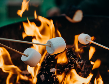 Roasting Marshallows on a school camp in Adelaide